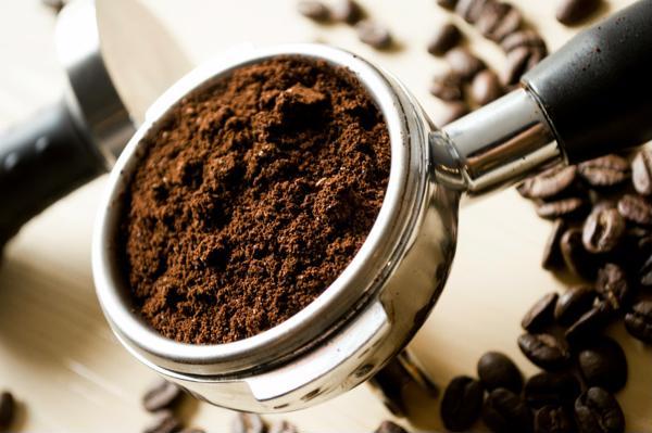 máy xay cafe công nghiệp