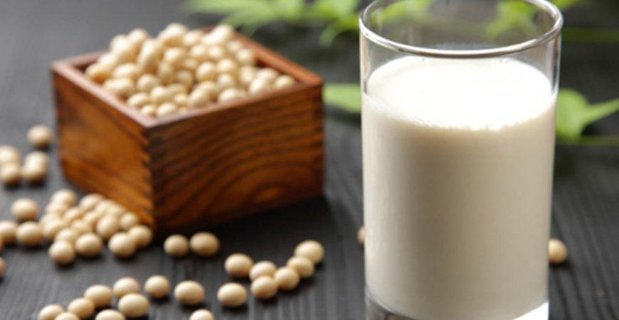 máy xay sữa đậu nành nguyên xác